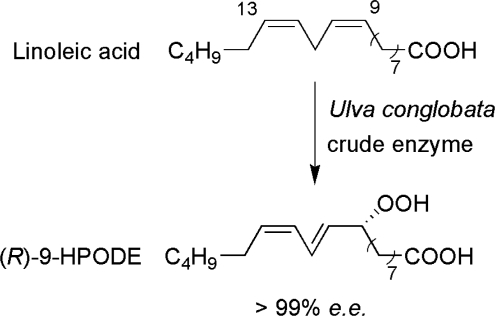 Ulva conglobata crude enzyme reaction forming (R)-9-hydroperoxy-(10E,12Z)-10,12-octadecadienoic acid ((R)-9-HPODE).