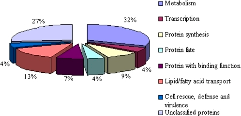 Functional categorization of down-regulated unigenes contained in the Bnms3 mutant according to the Munich Information Center for Protein Sequences classification. A total of 68 unigenes were grouped into eight functional categories and the percentages of gene transcripts in each group were listed. (This figure is available in colour at JXB online.)