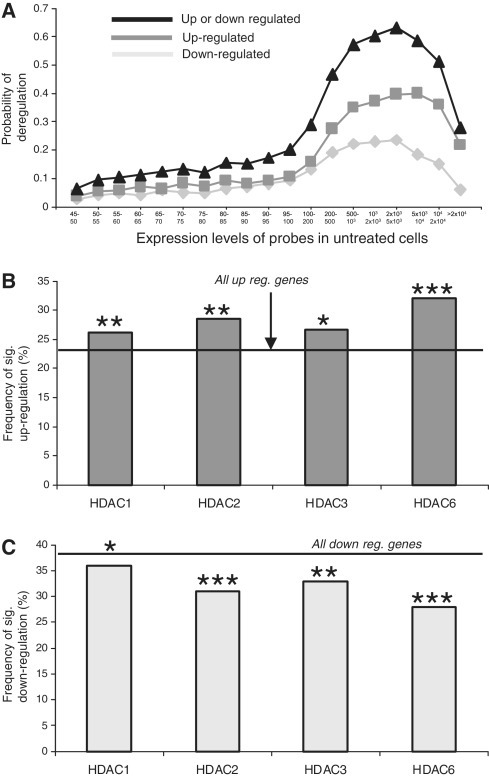 HDAC inhibition preferentially up-regulates HDAC-associated genes. (A) The probability of significant gene deregulation in CD4 cells after a 2 h exposure to high-dose butyrate and TSA. (B and C) Analysis of probes with expression values between 1000 and 5000 in CD4 cells. HDAC-associated genes/probes are more likely to be significantly upregulated (B) and less likely to be significantly downregulated (C) when compared with the overall probability of being up or downregulated on the array [horizontal lines (Chi-squared test)]. *P < 0.05; **P < 0.01; ***P < 0.001.