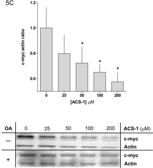 Okadaic acid abates the effect of ACS-1 on Akt activation. (A) Western blot and (B) densitometry analysis of Akt-(ser 473) phosphorylation in A549 cells incubated with ACS-1 and/or Okadaic acid for 2 hours and stimulated with EGF for 30 minutes. (C) ACS-1 increases PP2A activity as determined by total c-myc protein expression in MB231 cells treated with ACS-1 for 2 hours. C-myc protein levels are not altered in the presence of okadaic acid (OA). (D) Serum starved MB231 cells were treated with ACS-1 for 2 hours stimulated with EGF and lysed. PP2A (subunit C) was immunoprecipitated from whole cell extracts, washed with assay buffer and PP2A phosphatase activity measured. (E) ACS-1 does not affect the level of PP2A expression. Serum starved MB231 cells were treated with ACS-1 for 2 hours and stimulated with EGF for 30 minutes. PP2A and actin protein levels were determined by Western blot analysis.