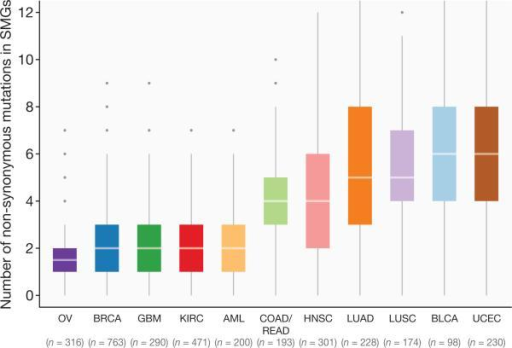 Distribution of mutations in 127 SMGs across Pan-Cancer cohortBox plot displays median numbers of non-synonymous mutations, with outliers shown as dots. In total, 3,210 tumours were used for this analysis (hypermutators excluded).
