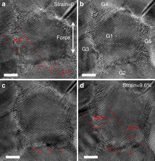 HRTEM images taken at different points of time showing the GB dislocation-mediated grain rotation.(a) Two GB dislocations (as marked with 'T') at GB1–3. (b–d) During straining, the number of the dislocations increased, leading to the GB angle at G1–2 increasing from 8.3° to 13.5°. Scale bars, 2 nm.