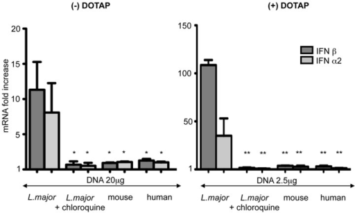 Stimulation of human plasmacytoid dendritic cells by L. major and vertebrate DNA.Human plasmacytoid cell line (Gen2.2) was stimulated by L. major, mouse and human DNA alone (left) or complexed with DOTAP (right). In the indicated lanes, cells were treated with chloroquine (20 µM) before L. major stimulation. Expression of the indicated cytokines was determined by real time RT-PCR. The mRNA expression levels were normalized to the expression of the HPRT gene and calculated as the n-fold difference with the expression in unstimulated cells. The results represent the mean and SEM of three independent experiments (*p<0,05, **p<0,01).
