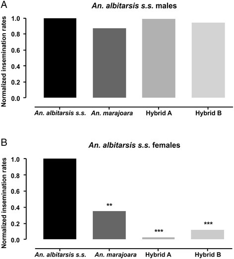 Normalized insemination rates. (A)Crosses between females of different genotypes and Anopheles albitarsis s.s. males and (B) between males of different genotypes and Anopheles albitarsis s.s. females. **P < 0.01; ***P < 0.001.