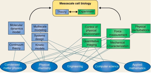 The integration of physical sciences with cell biology open i the integration of physical sciences with cell biology a flow chart showing examples of how ccuart Image collections