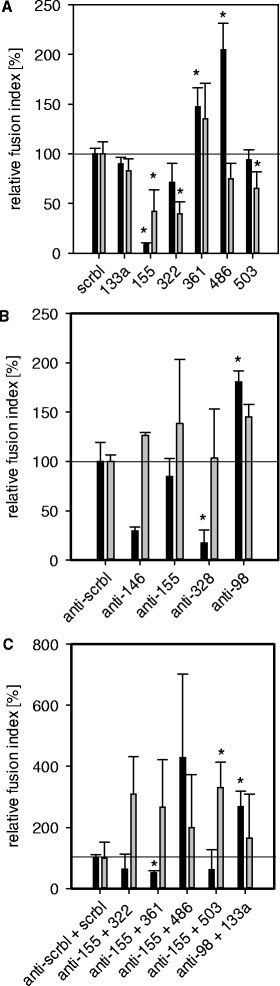Functional analysis of miRNAs in human myoblast differentiation and TNF-α treatment. Relative fusion indices for miRNA mimics or miRNA inhibitor transfections into human LHCN myoblasts in the differentiation medium (black bars) or differentiation medium with TNF-α supplementation (grey bars). (A) Transfection of 25 nM miRNA mimics or scrambled control miRNA (scrbl), (B) 50 nM miRNA inhibitors or scrambled control inhibitors (anti-scrbl), and (C) a combination of 75 nM miRNA inhibitor and 25 nM miRNA mimic or respective controls. Samples with specific miRNAs or inhibitors are shown relative to the respective scrambled reference which was set to 100% fusion index. Significant differences (p > 0.05) of relative fusion indices are marked by an asterisk.