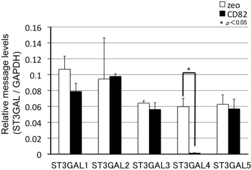 Effects of CD82 on the expression of genes encoding glycosyltransferases (ST3GALs) related to sialyl Lewis synthesis.Total RNA was isolated from h1299 cells and analysed by real-time RT-PCR. mRNA levels of glycosyltransferase-encoding genes (ST3GALs) were corrected relative to the levels of GAPDH mRNA, with h1299/zeo set at 1. Data are shown as the mean ± SEM.