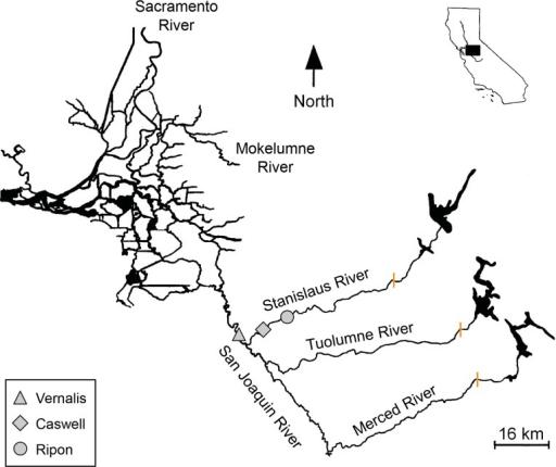 The San Joaquin basin of the Central Valley California Openi