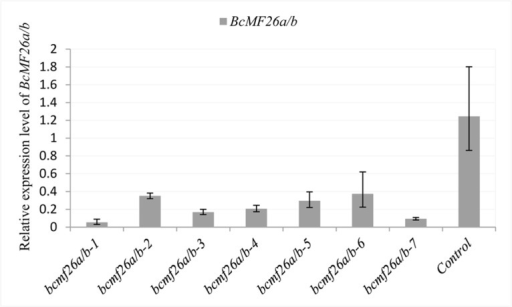 Analysis of the BcMF26a/b mRNA levels in the inflorescences of the bcmf26a/b and control lines using qRT-PCR analysis.The expression levels of BcMF26a/b in the inflorescences of bcmf26a/b lines were significantly less than that of the empty vector pCAMBIA1301-transformed plants (control). UBC-10 was used as an internal control. Standard errors for three independent experiments are shown.