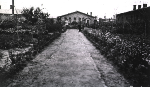 <p>A view of the gardens at Military Hospital No. 1.</p>