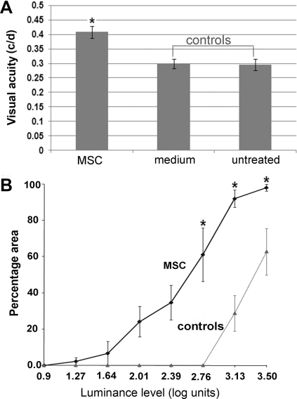 Preservation of visual function.A. Visual acuity tested by Optomotor response. Unrestrained animals were placed on a platform, where they tracked the grating with reflexive head movements. The acuity threshold was quantified by increasing the spatial frequency of the grating. RCS rats received MSCs and medium injection via tail vein at P30 and tested at P90. Visual acuity was significantly better in MSC treated eyes compared with controls (P<0.001). A value of 0.43 c/d was recorded, which was 78% of normal value (0.55 c/d in wild-type). B. The luminance threshold was evaluated by recording single and multiunit activity close to the surface of the superior colliculus (SC). It measures functional sensitivity across the visual field, which in turn provides a topographic indication of the magnitude and area of photoreceptor rescue across the retina. MSC treated rats recorded around P90–100 revealed significantly lower threshold than controls (P<0.005), for example, over 60% of the SC area had threshold at 2.76 log units in MSC treated eyes, no detectable response in control eyes.