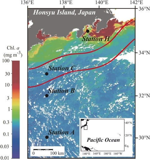 Locations of sampling stations in the western North Pacific Ocean superimposed on the moderate resolution imaging spectroradiometer (MODIS) chlorophyll image from 19 July 2010. White areas have no data because of cloud cover. The MODIS chlorophyll image is courtesy of the Japan Aerospace Exploration Agency (JAXA) and Tokai University. The red lines indicate the northern and southern boundaries of the Kuroshio Current on 14 July 2010 (Marine Information Service Office, Oceanographic Data Information Division, Hydrographic and Oceanographic Department, Japan Coast Guard, 2010).