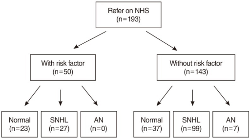 Incidence of hearing loss according to the presence of risk factors for hearing loss. The presence of risk factors did not increase the incidence of hearing loss. NHS, newborn hearing screening; SNHL, sensorineural hearing loss; AN, auditory neuropathy.