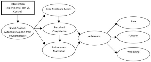 Self-Determination Theory Model of Behavior Change.