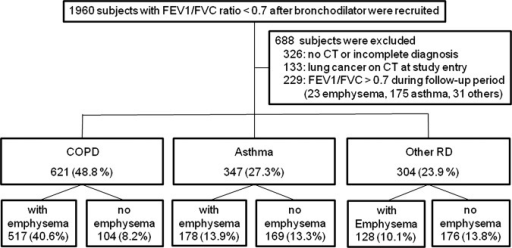 Phenotypes of chronic airflow obstruction (CAO). CAO was defined as postbronchodilator FEV1/FVC<0.7 throughout the observation period. Patients were classified by the high-resolution CT findings of emphysema and other clinical examinations. FEV1, forced expiratory volume in 1 s; FVC, forced vital capacity; RD, respiratory diseases.