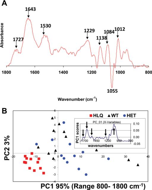 Ftir chart - Infrared spectroscopy correlation table ...