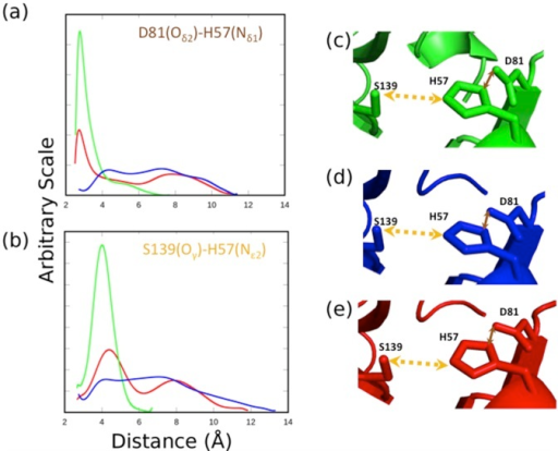 Dynamics behavior within the catalytic triad site of the threading models (HCV-4a, blue and HCV-3a, red) and the template (HCV-1b, green) proteases.The distance distribution profiles between Oδ2 of residues D81 and Nδ1 of H57 (a) and between Oγ of residue S139 and Nε2 of residue H57 (b), during the stimulation. Orange and brown arrows indicate the selected distances in the rigid structures of both the models (HCV-4a, d and HCV-3a, e) and the template (HCV-1b, c)