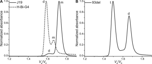 Normalized chromatograms of bimolecular quadruplex-forming sequences: (A) hairpin-looped H-Bi-G4 and stacked-dimer J19, and (B) the stable interlocked dimers 93del. Monomer species are indicated with a m, dimers with a d and tetramers with a t.