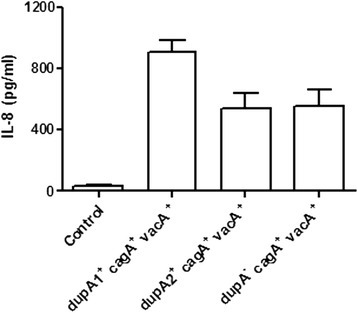 In vitro IL-8 production from AGS cells co-cultured with 6 (dupA1+,cagA+,vacA+) strains, 6 (dupA2+,cagA+,vacA+) and 6 (dupA−,cagA+,vacA+) strains. IL-8 production was significantly higher in dupA1+ (cagA+, vacA+) compared to dupA2+ (cagA+, vacA+) (536.0 ± 100.4 pg/mL, P = 0.008) and dupA-negative strains (cagA+, vacA+) (549.7 ± 104.1 pg/mL, P = 0.009). MOI of H. pylori strain was 100 for 8 hours. Experiments were repeated 3 times for the 18 strains. IL-8 in the supernatant was assayed by an ELISA in duplicate. Data are expressed as mean ± standard error.