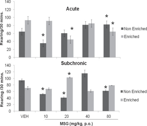 Effect of Monosodium glutamate on rearing activity in enriched and non enriched mice. Each bar represents Mean ± S.E.M, *p<0.05 compared to vehicle. n = 6; VEH: Vehicle.
