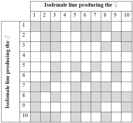 Isofemale line combinations that were assayed.Combinations that were mated in singly-mated crosses are shaded (see Methods). All combinations (shaded and unshaded) were used in the multiply-mated crosses.