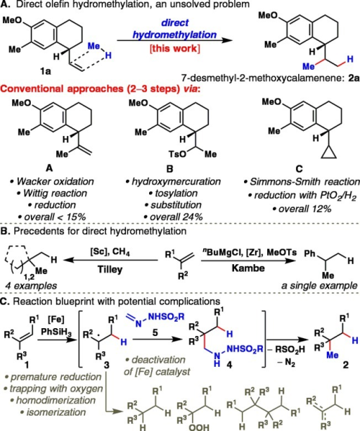 (A) Direct olefin hydromethylation, an unsolved problemin organicsynthesis. (B) Precedents for hydromethylation. (C) Reaction blueprintwith potential complications.