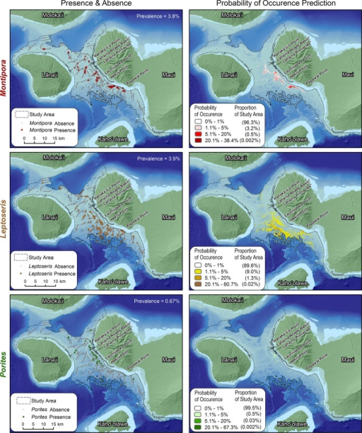 Observed and predicted MHC distributions.The maps on the left show the location of Montipora, Leptoseris and Porites corals, and the maps on the right show the predicted distributions of Montipora, Leptoseris and Porites habitats. These predicted distributions were created by spatially averaging the 10 model replicates for each genus.