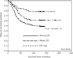 Survival analyses (cancer-related Kaplan–Meier plots) of patients with different degrees of HLA-DR expression. n=58 with strong DR expression, n=123 with weak DR expression and n=176 DR negative.