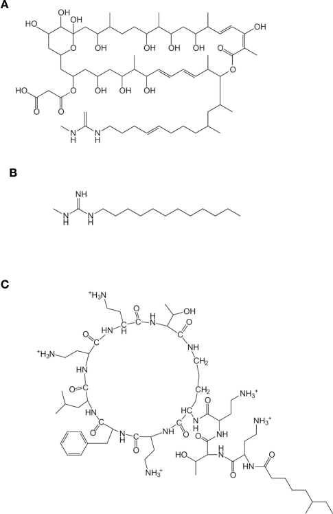 Structures of niphimycin (NM) (A), N-methyl-N″-dodecylguanidine (MC12) (B), and polymyxin B (PMB) (C).