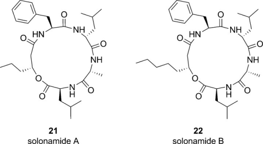 Structures of solonamideA and solonamide B, which were isolatedfrom a marine Photobacterium and display agr inhibitory activity. Given the structural similaritiesof these analogues to the tr-AIP-2 scaffold, it is postulated thatthey may serve as competitive inhibitors of the AgrC receptor.61