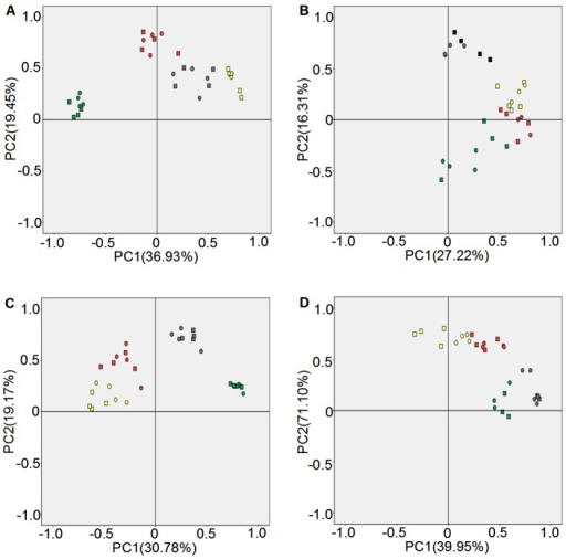 Principal component analysis of fungi communities diversity in rhizosphere soil.A: Luhe in 2011; B: Luhe in 2012; C: Xinxiang in 2011; D: Xinxiang in 2012. Square: N12-1; Round: Y158. Gray: seeding stage; Green: turngreen stage; Red: grainfilling stage; Yellow: maturing stage. Band position and presence (presence/absence) were used to carry out PCA analyses.