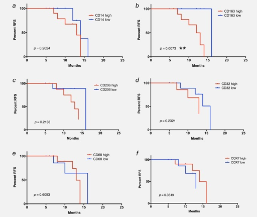 Association of RFS with CD163 surface expression on ovarian carcinoma TAMs. Kaplan–Meier plots showing the RFS of patients with high or low levels (median centered) of CD14 (% of leukocytes; panel a), CD163 (% of CD14+; panel b), CD206 (% of CD14+; panel c), CD32 (MFI; panel d), CD68 (% of CD14+; panel e) and CCR7 (% of CD14+; panel f) expression on their TAMs. p-Values were determined by Mantel–Cox log-rank test.