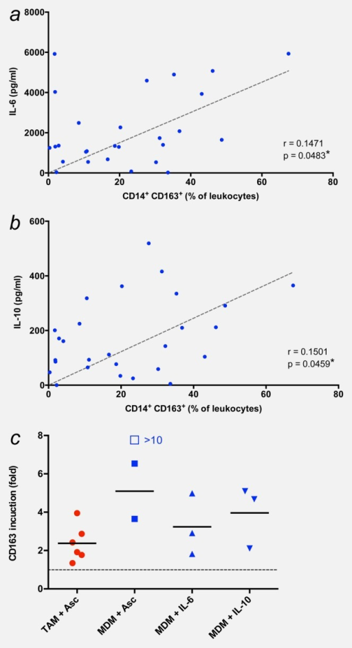 CD163 surface expression is associated with IL-6 and IL-10. (a and b) Correlation of CD163 surface expression with ascites levels of IL-6 and IL-10. *p < 0.05; **p < 0.01 by Pearson's r correlation. (c) Induction of CD163 in TAMs and MDMs by ascites and/or IL-10 and IL-10. TAMs were cultured for 2 days with or without cell-free ascites (10% of total culture medium). MDMs from healthy donors were differentiated in the presence of GM-CSF and either cell-free ascites (10% of total culture medium) or the indicated recombinant cytokines for 5 days. Expression of surface marker CD163 was determined by FACS and is expressed as fold induction, i.e., normalized to 1 for the respective untreated control (untreated TAMs and MMDs, respectively, are represented by the dotted line). Each data point within the same treatment group represents a different donor. Horizontal bars indicate averages. The induction value represented by the open box could not be precisely determined because of an extremely low expression value in untreated MDMs. [Color figure can be viewed in the online issue, which is available at wileyonlinelibrary.com.]