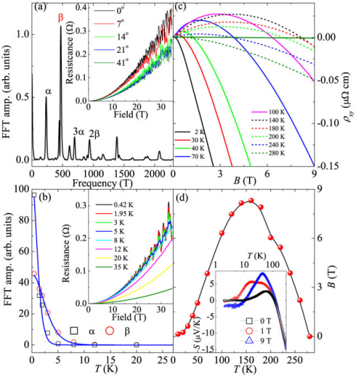 Quantum Oscillation and Hall resistivity of NbSb2.(a) The FFT spectrum of the quantum oscillation of NbSb2 crystal. The inset shows the typical SdH oscillation of NbSb2 in 0.42 K with magnetic field up to 32 T. The current is parallel to b-axis and the magnetic field direction changes between perpendicular to the current (parallel to the ac-plane 0 degree) and perpendicular to ac-plane (90 degree). (b) The temperature dependence of the quantum oscillation amplitude for two oscillation frequencies. The blue lines are the fit results which give the effective mass. The inset shows the magnetic field dependence of the oscillation at different temperatures. (c) The magnetic field dependence of the Hall resistivity ρxy at different temperatures. (d) Sign change of Hall coefficient at different temperatures and magnetic fields. The inset shows the temperature dependence of the Seebeck coefficient S with different magnetic field.