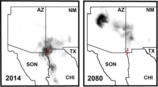 Bioclimatic variables (WorldClim database) incorporated with193 GPS capture coordinates for Crotalus willardi obscurus in the sky Islands of southwestern North America provide climate envelopes and core habitat areas in ArcGIS 10.Color density = strong habitat preference, with black/dark grey being most positive. Red circles = sampling locations. 2014 = current climate envelope; 2080 = a conservative climate envelope projected 66 years in the future.