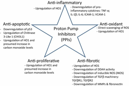 Overview of pleiotropic effect of proton pump inhibitors (PPIs). The PPIs modulate inflammation, oxidative stress, fibrosis, cell proliferation and survival by regulating signaling pathways that are involved in these processes.