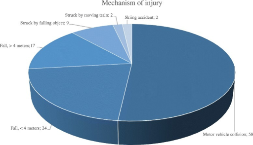 Mechanism of injury. The numbers depict number of patients per category (n = 112)