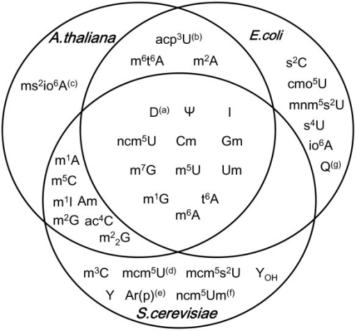 Venn Diagram Showing Similarities And Differences Of Mo