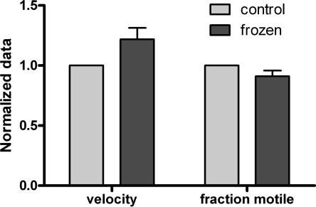 Effects of one freeze–thaw cycle on the quality of HMM-propelled actin filament motility. Data from five different experiments. The control velocity was 5.97 ± 0.63 μm/s, and the control fraction of motile filaments was 0.74 ± 0.04. The duration of the freezing period varied between 4 and 30 days (average 16.00 days) without an appreciable difference in the effect on motility over this period. Error bars: SEM.