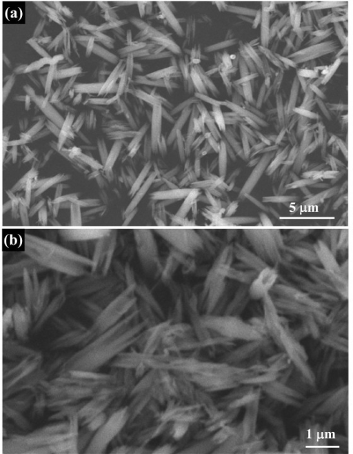 SEM images of collapsed Nb2O5 nanotubes obtained with HF as etching reagent: (a) low-magnification SEM image; (b) high-magnification SEM image.