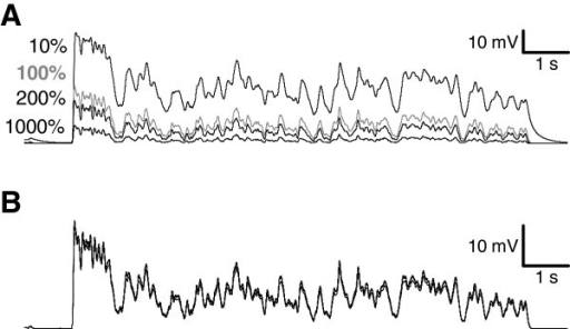 Effect of varying the maximum conductances of the KDR and KA in the simulations. A) Light responses were simulated with 10% (top trace), 100% (gray trace), 200% and 1000% (lowest traces) of the experimentally determined mean KDR maximum conductance. B) Modifying the maximal KA conductance had no effect on the simulated light response. The responses were simulated with 0%, 100%, 200% and 1000% KA conductances relative to the standard simulation value of 60 nS. Due to minimal differences in the responses the traces overlap.