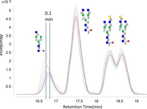 Chromatograms of 13 overlaid injections showing the majorN-glycansfrom Panitumumab acquired on nanoLC-Chip-TOF. Injections were performedconsecutively. The largest variation in retention time correspondedto 0.10 min.