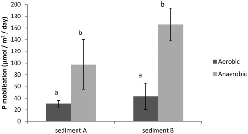 P mobilisation rates (µmol m−2 day−1) during aerobic and anaerobic conditions for both sediment cores (A and B).Significant differences between treatments are indicated with different letters.