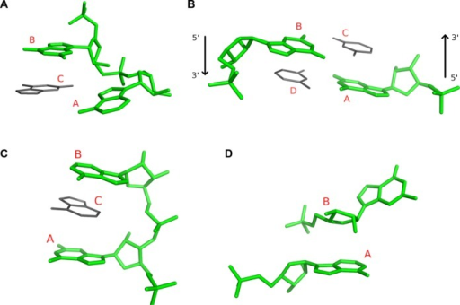Additional classes of spatial relations between ribonucleotide residues detected and reported by ClaRNA: diagonal (consecutive) (A), diagonal (non-consecutive), arrows indicate main chain direction (B), sandwich (consecutive) (C) and base–ribose stacking (D). The pair of residues forming a contact is indicated by the green color, and possible neighboring residues are indicated by the gray color.