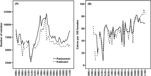 Number of reindeer (A) and calving percentage (calves per 100 females) (B) in Paistunturi and Kaldoaivi during the period 1960–2012 (RHA2014).