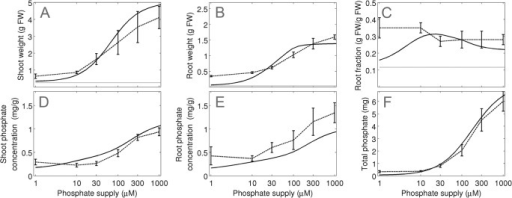 Model validation and evaluation of the adaptive potential of plants to a range of different Pi concentrations.Simulations (continuous line) and experimental data (experiment 3; dashed line) are shown for (A) shoot and (B) root growth, (C) root fraction, (D) shoot Pi concentration and (E) root Pi concentration and (F) total Pi per plant for plants grown at 6 different Pi concentrations (1, 10, 30, 100, 300, 1000 μM). The grey line in (a)-(c) represents the value at the beginning of the experiment. Error bars represent the standard deviations (N = 10).
