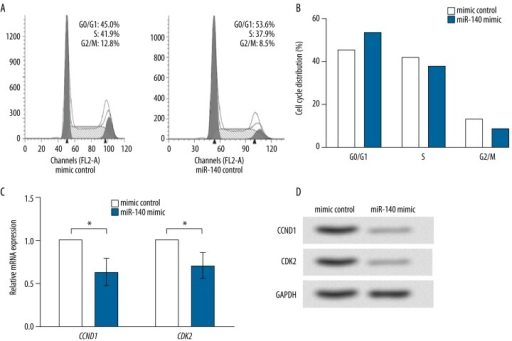 miR-140 leads to G0/G1 arrest of HGC-27 cells. (A) Flow cytometry results show the cell percent in the G0/G1 phase is increased, while that in S and G2/M phases is decreased by miR-140 overexpression. (B) Histogram reflects the cell cycle distribution in (A). (C) CCND1 and CDK2 mRNA levels are inhibited by miR-140 overexpression. GAPDH is used as the internal control. * P<0.05. (D) CCND1 and CDK2 protein levels are inhibited by miR-140 overexpression. GAPDH is used as the internal control. CCND1 – cyclin D1. CDK2 – cyclin-dependent kinase 2.