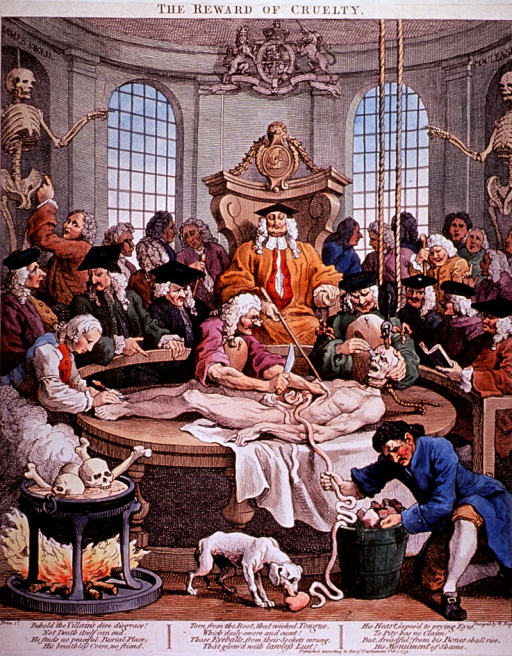 <p>A cadaver is being dissected in an anatomical theater.</p>