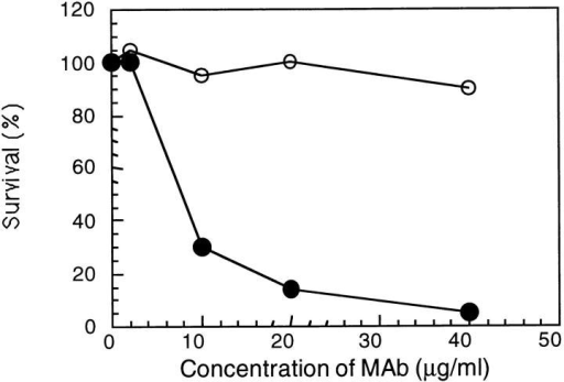 Bactericidal activity of protein A–purified mAb Me-1 against  N. meningitidis strain 608B. Guinea pig serum (closed circles) or heat inactivated guinea pig serum (open circles) were used as the source of complement to evaluate the bactericidal activity.