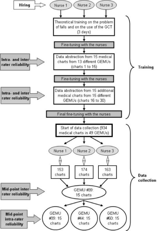 Outline of the reviewers' training process and of the measures of reliability of the Geriatric Care Tool. Description of the theoretical and practical training process and of the measurement of intra- and inter-reliability of the Geriatric Care Tool (GCT) during the collection of data. GEMU: Geriatric Evaluation and Management Unit.